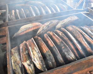 伊豆と鰹節に関する歴史